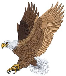 Animals Embroidery Design Eagle From Dakota Collectibles