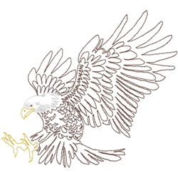 Eagle soaring outline