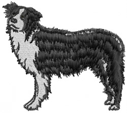 Border Collie embroidery design