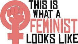 Feminist Looks Like Print Art