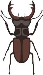 Stag Beetle Print Art