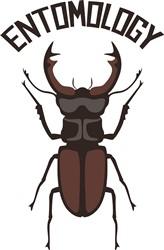 Entomology Print Art
