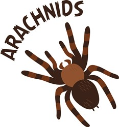 Arachnids Print Art