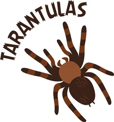 Tarantulas Print Art