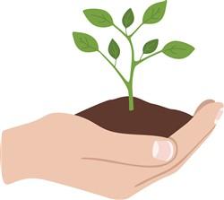 Plant A Tree Print Art