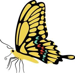 Swallowtail Butterfly Print Art