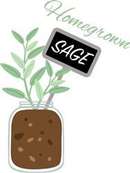 Homegrown Sage Print Art