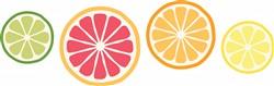 Citrus Fruit Print Art