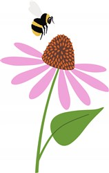 Bee & Cone Flower Print Art