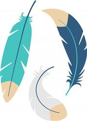 Feathers Print Art