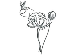 Hummingbird Flower Outline embroidery design