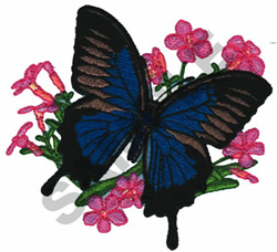 BLUE MOUNTAIN BUTTERFLY embroidery design