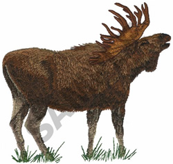 ALASKAN BULL MOOSE embroidery design