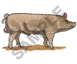 LARGE WHITE PIG embroidery design