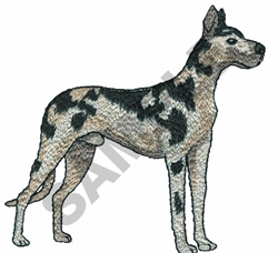 HARLEQUIN GREAT DANE embroidery design
