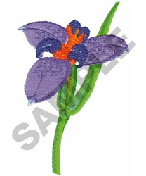 WARICA BRAZIL embroidery design