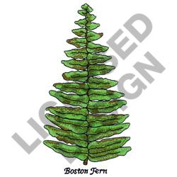 BOSTON FERN embroidery design