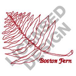 BOSTON FERN embroidery design