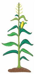 Corn Stalk embroidery design