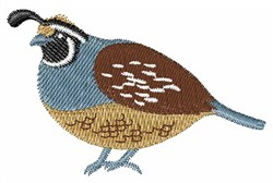 Valley Quail embroidery design