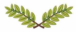 Olive Branch embroidery design