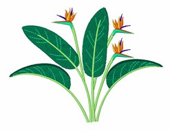 Hawaiian Plant   embroidery design