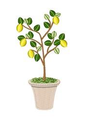 Lemon Tree embroidery design