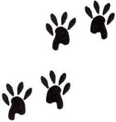 Cat Paws embroidery design