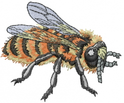 Honey Bee embroidery design