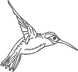 Blackwork Hummingbird Right embroidery design