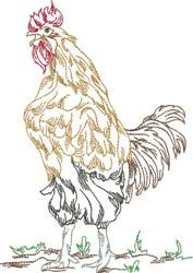 Proud Rooster embroidery design