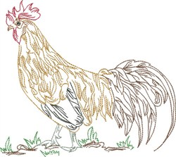 Elegant Rooster embroidery design