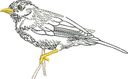 Sketched Bird embroidery design