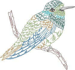 Hummer On Branch embroidery design