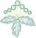 Spring Flowers Outline embroidery design