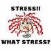 What Stress
