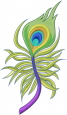 Peacock Feather embroidery design
