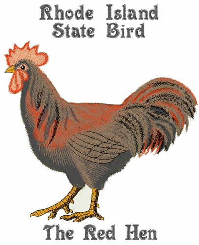 Rhode Island Bird Name
