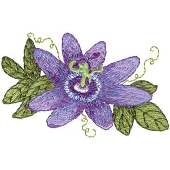 Passion Flower Embroidery Design Annthegran