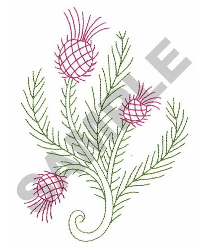 Thistle outline embroidery design annthegran
