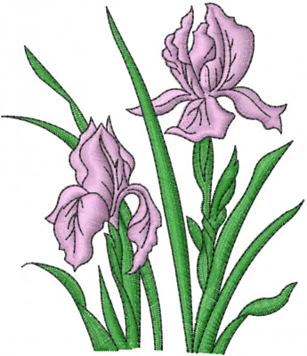 Iris Flowers Embroidery Design Annthegran