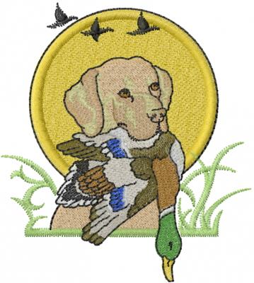 letter of instruction and pheasant embroidery design annthegran 13368 | 13368